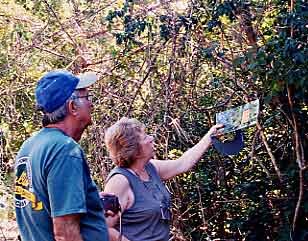Kate & Bernie learning their South Florida trees.